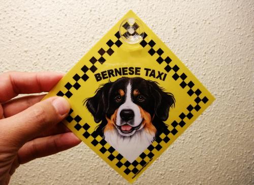 バーニーズ・タクシーのラミネートサイン(吸着盤つき)