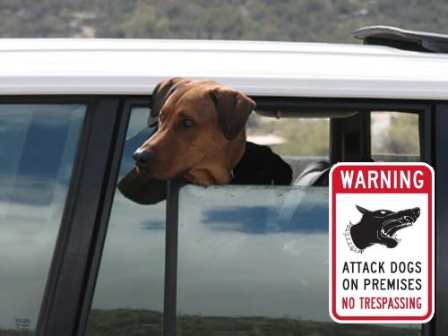 WARNING-NO TRESPASSING マグネットサイン
