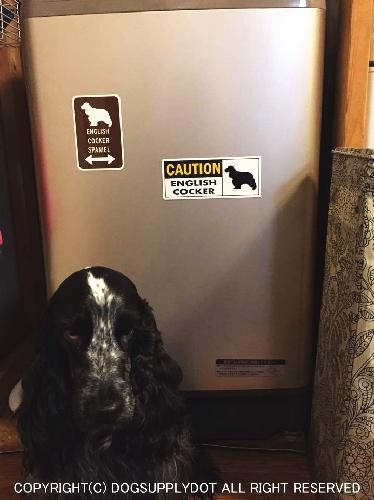 イングリッシュコッカースパニエルのイラスト&矢印 マグネットサインを洗濯機に貼り付けています♪