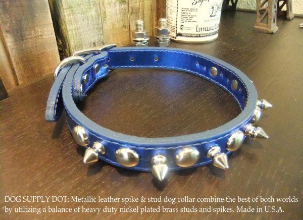 小型犬用のスパイク&スタッズカラー首輪:メタリックブルー(幅20mm)