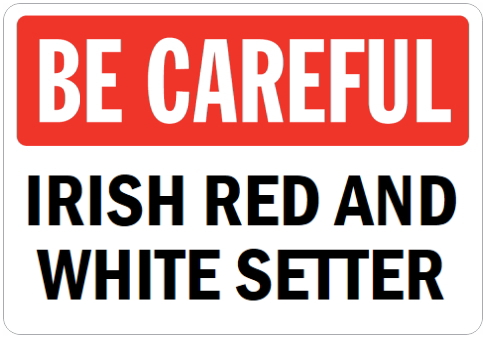 オーダーメイドのマグネットサイン:BE CAREFUL IRISH RED AND WHITE SETTER