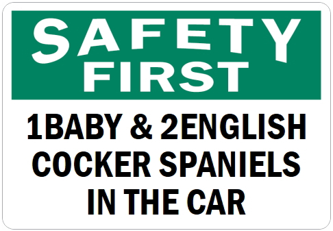 オーダーメイドのマグネットサイン:SAFETY FIRST 1BABY & 2ENGLISH COCKER SPANIELS IN THE CAR