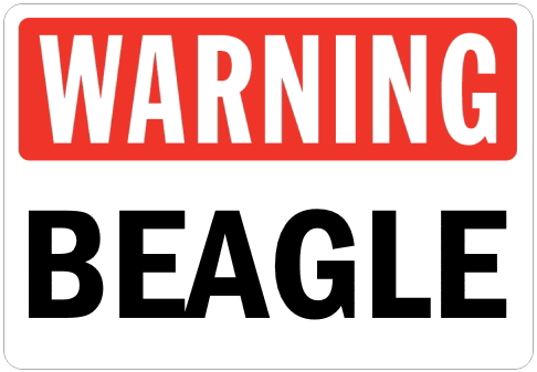 オーダーメイドのマグネットサイン:WARNING BEAGLE