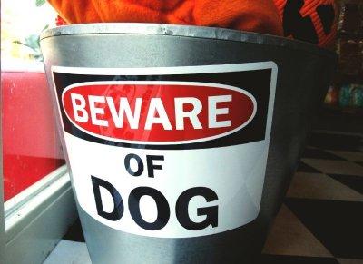 画像2: (BEWARE) OF DOG マグサイン