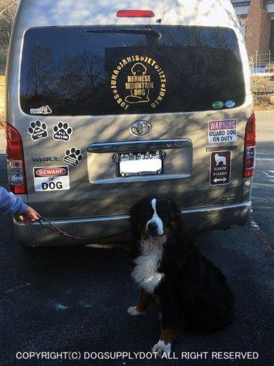 画像3: (BEWARE) OF DOG マグサイン