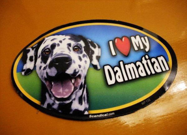 画像1: I Love My Dalmatian オーバルマグネットステッカー (1)