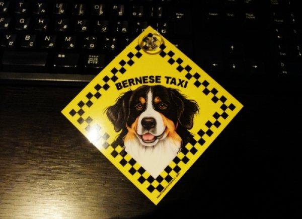 画像1: バーニーズ・タクシーのラミネートサイン(吸着盤つき) (1)