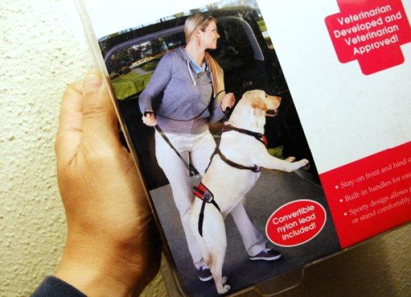 画像1: 大型犬 歩行補助・サポート用:リフト&ゴー・サポートハーネス&リード(Lサイズ) (1)