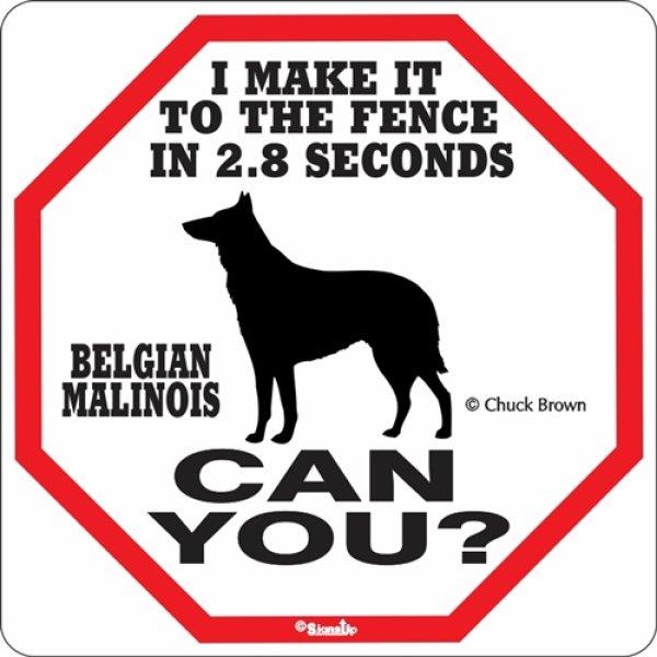画像1: ベルジアンマリノア警戒中 英語看板 アメリカ輸入サインボード:I MAKE IT TO THE FENCE IN 2.8 SECONDS BELGIAN MALINOIS CAN YOU? [MADE IN U.S.A] (1)