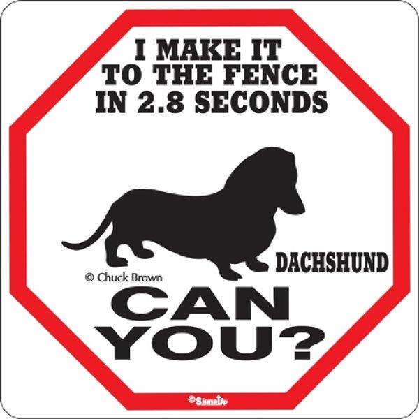 画像1: ダックスフンド警戒中 英語看板 アメリカ輸入サインボード:I MAKE IT TO THE FENCE IN 2.8 SECONDS DACHSHUND CAN YOU? [MADE IN U.S.A] (1)