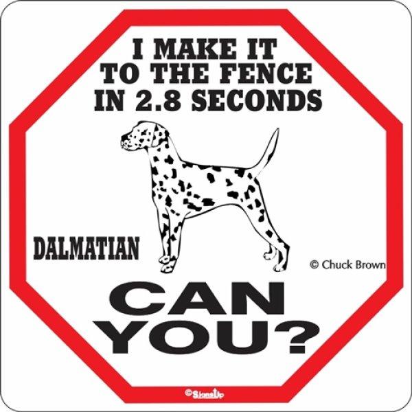 画像1: ダルメシアン警戒中 英語看板 アメリカ輸入サインボード:I MAKE IT TO THE FENCE IN 2.8 SECONDS DALMATIAN CAN YOU? [MADE IN U.S.A] (1)