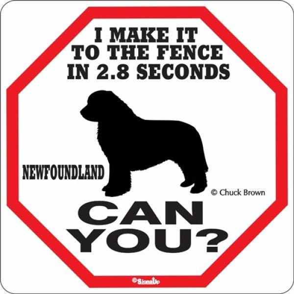 画像1: ニューファンドランド警戒中 英語看板 アメリカ輸入サインボード:I MAKE IT TO THE FENCE IN 2.8 SECONDS NEWFOUNDLAND CAN YOU? [MADE IN U.S.A] (1)
