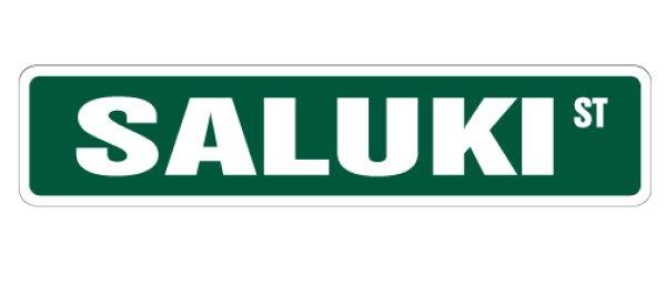 画像1: サルーキ 英語看板 アメリカ道路標識 ストリートサインボード:SALUKI ST[MADE IN U.S.A] (1)