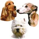 犬/DOG ウインドウステッカー(貼って簡単にはがせるシール)