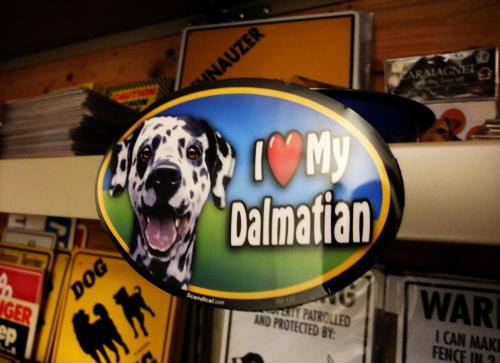 I Love My Dalmatian オーバルマグネットステッカー
