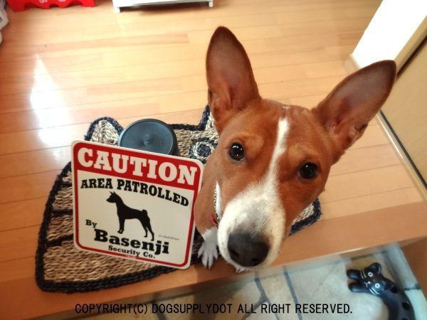 バセンジー注意 英語看板 アメリカ輸入サインボード
