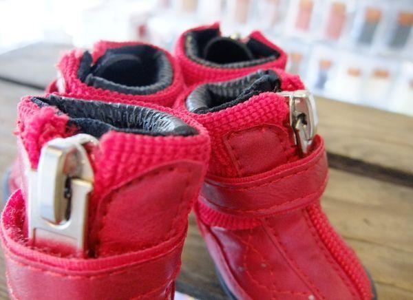 小型犬用の靴:ドッグスニーカー(ハイカットシューズ、ラバーソール)