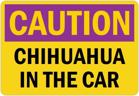 オーダーメイドのマグネットサイン:CAUTION CHIHUAHUA IN THE CAR