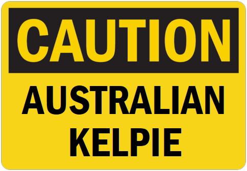 オーダーメイドのマグネットサイン:CAUTION AUSTRALIAN KELPIE