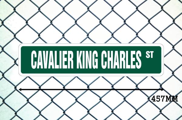 キャバリアキングチャールズ 英語看板 アメリカ道路標識 ストリートサインボード