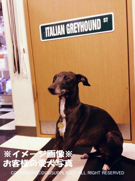 イタリアングレイハウンド 英語看板 アメリカ道路標識 ストリートサインボード